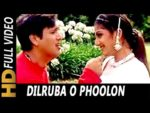 Dilruba O Phoolon Lyrics – Beti No.1
