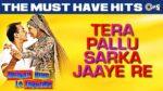 Tera Pallu Lyrics – Dulhan Hum Le Jayenge