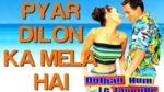Pyar Dilon Ka Mela Lyrics – Dulhan Hum Le Jayenge