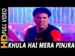 Khula Hai Mera Pinjra Lyrics – Joru Ka Ghulam