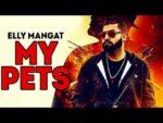 My Pets – Elly Mangat – Randy J – Sandhu Saiyanwala – Lyrics
